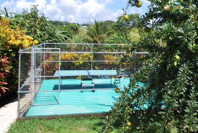 Location gites basse-terre Guadeloupe